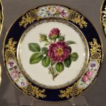 9 Botanical Paris Porcelain Plates, Ca 1850